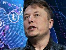 特斯拉 CEO 马斯克:我们不应该监管加密市场