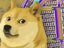 """调查显示 1/4的美国人认为狗狗币是""""下一个比特币"""""""