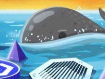 依靠钱包追踪鲸鱼活动