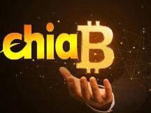 Chia(奇亚)能不能成为第二个比特币?