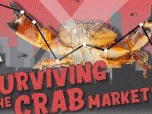 加密货币市场新范式:如何在螃蟹市场中生存和繁荣