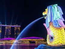 新加坡推出区块链贸易与连接网络(BTC Network),助力中小企业拓展区块链应用